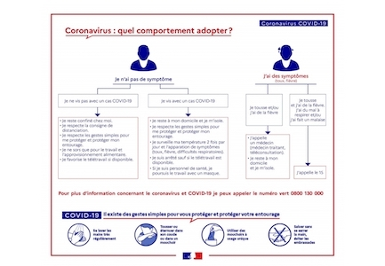 Quel Comportement Adopter Officiel